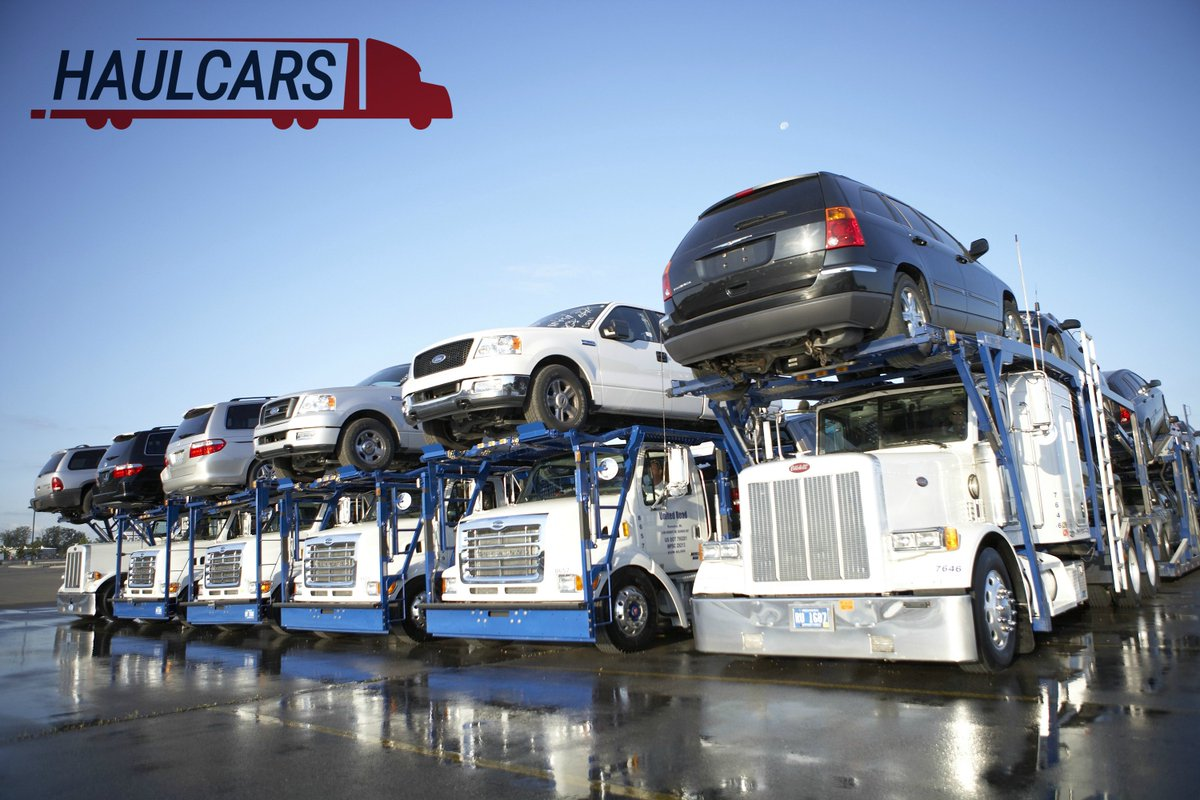 Car Shipping Companies >> Car Shipping Companies Your Guideline So You Hire The